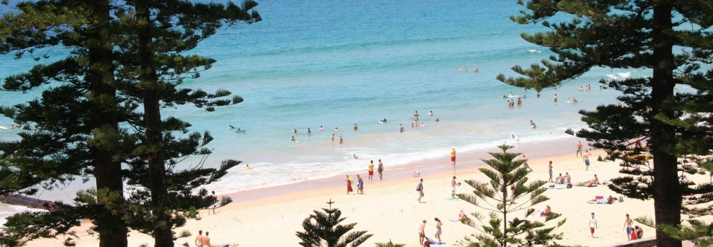 Northern beaches trades and local business